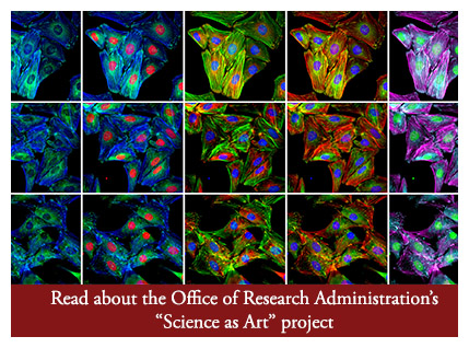 Science as Art