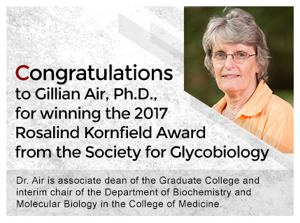 Dr Gillian Air - Rosalind Kornfield Award